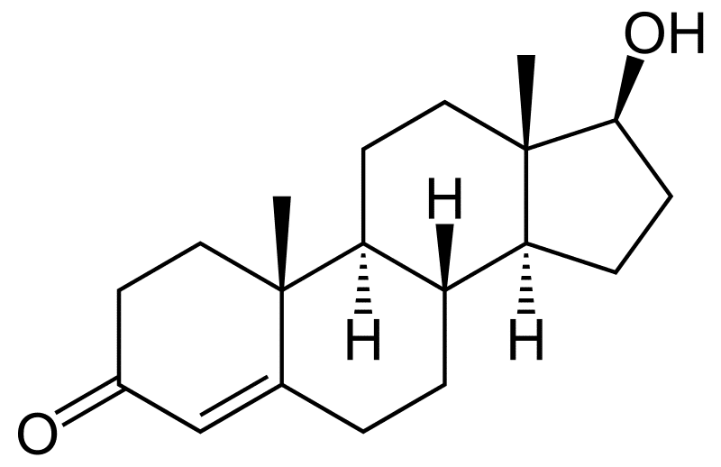 Qu'est-ce que la testostérone ?