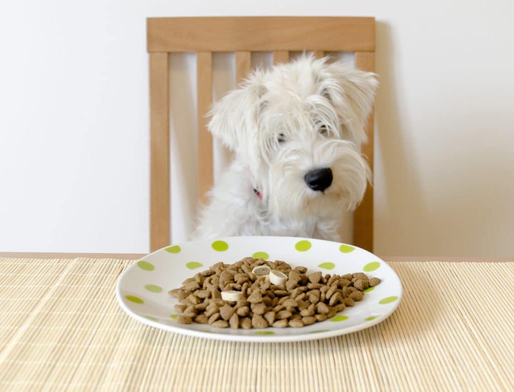 Quels compléments alimentaires peut-on donner ?