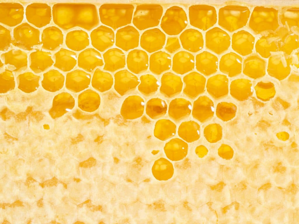 Savoir différencier un bon miel d'un mauvais miel