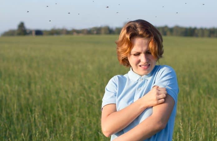 Comment apaiser votre peau après une piqûre d'insecte ?