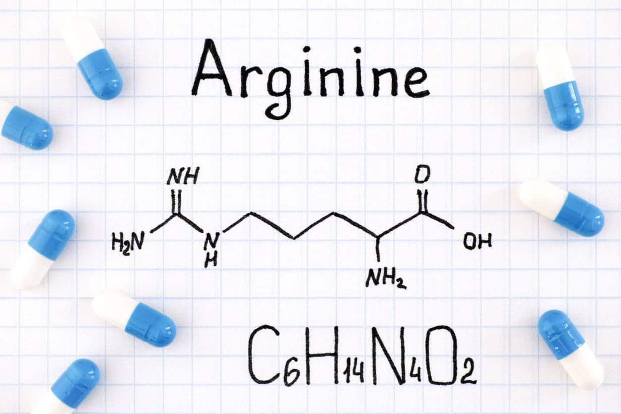 arginine et musculation