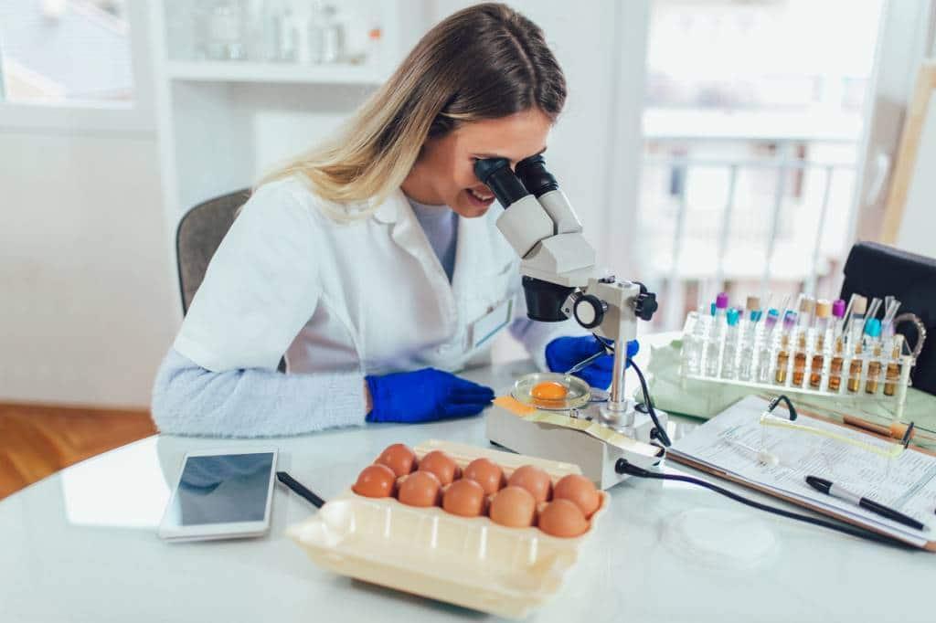Contrôle qualité en laboratoire alimentation