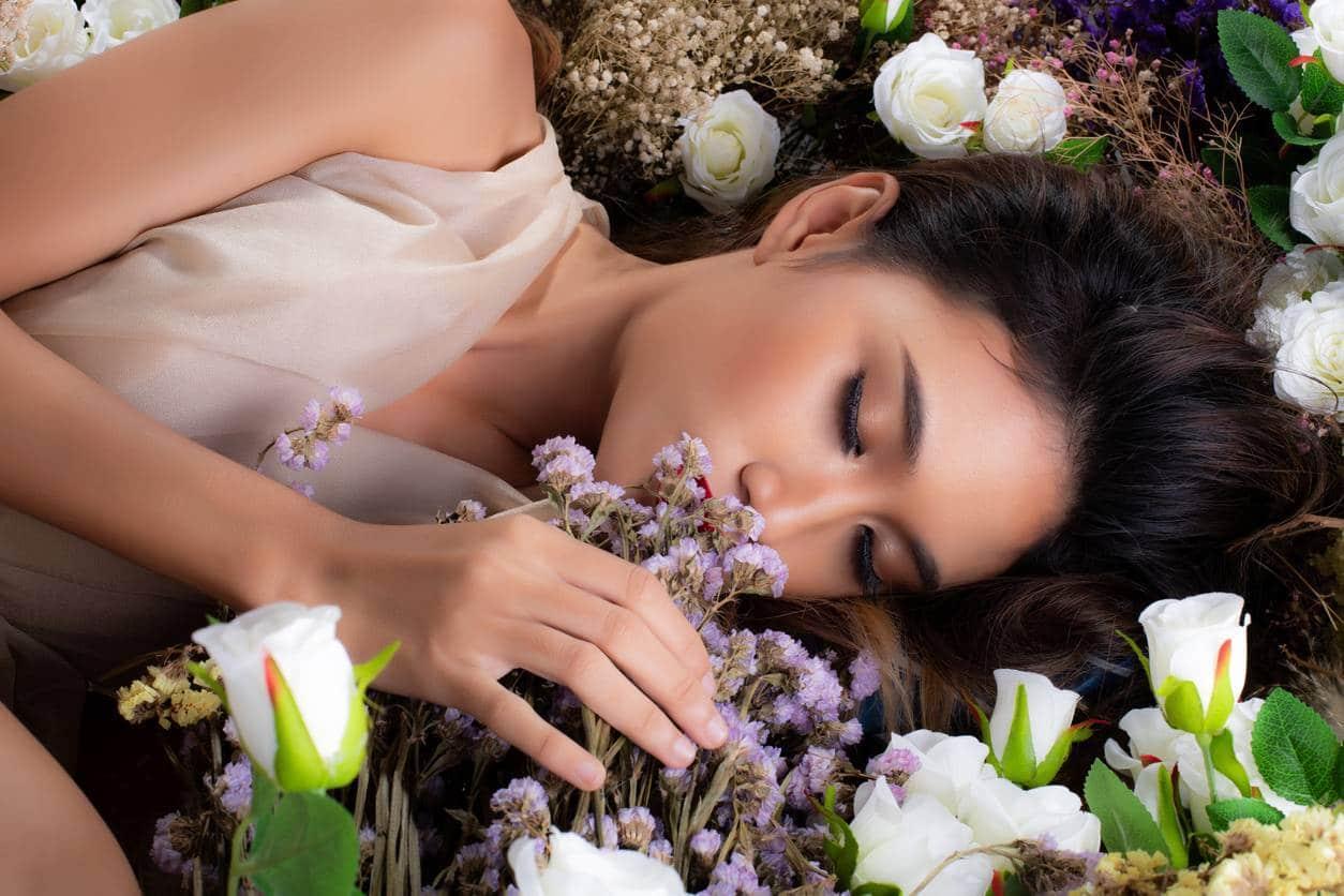 Plantes qui favorisent le sommeil