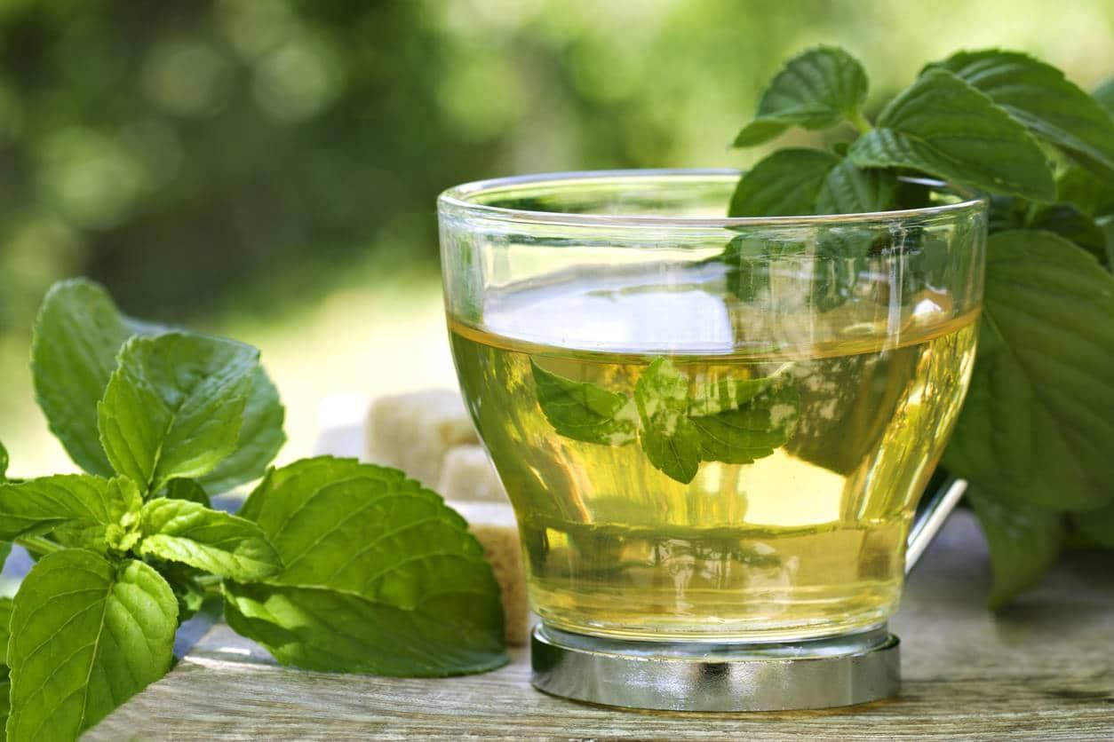 les bienfaits du thé pour le corps