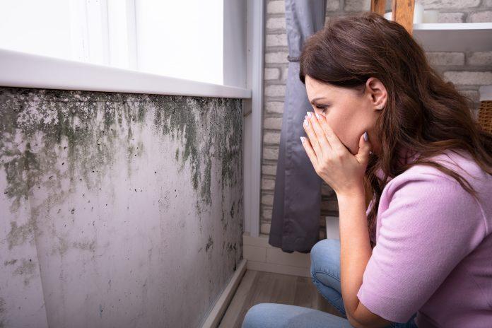 Quels sont les effets de l'humidité sur la santé ?