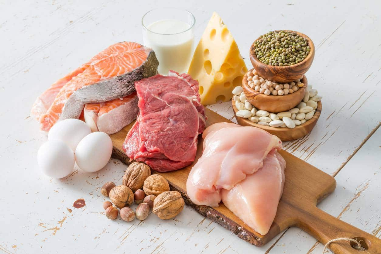 protéine bio, teneur en leucine