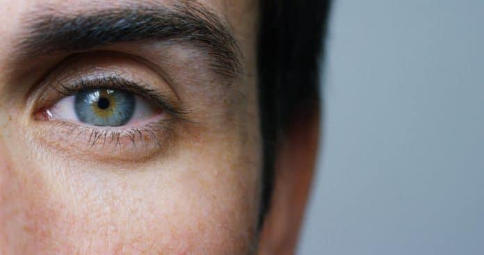 Quelles sont les principales pathologies visuelles ?