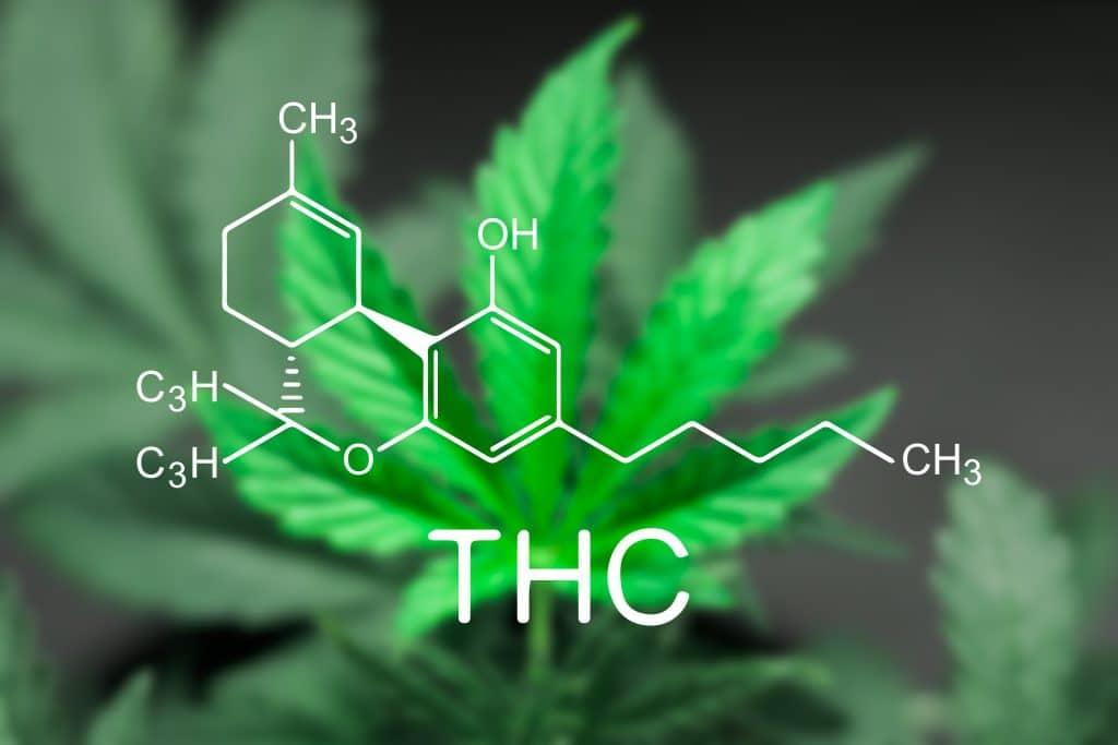 Le THC qu'est-ce que c'est exactement?